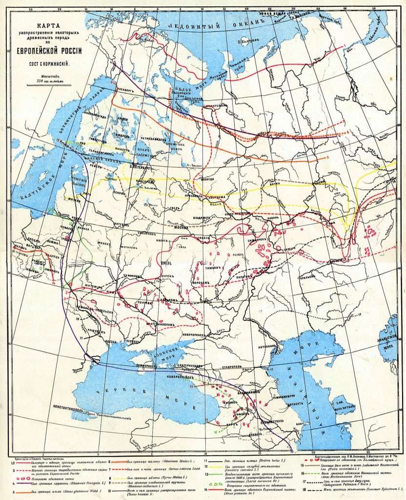Карта распространения некоторых древесных пород по Европейской России, 1901 г.