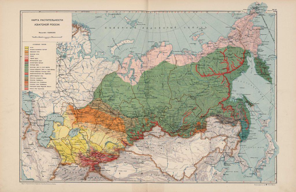 Карта растительности Азиатской России, 1914 г.