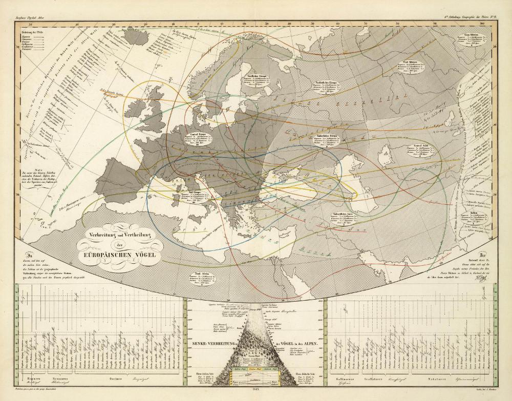 Карта распространения птиц в Европе, 1845 г.